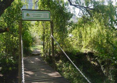 Parkrun-bridge-Clarens